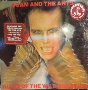 Ants (1)