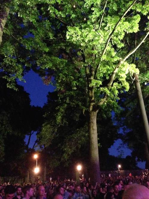 NationalPP618_TreesCrowdLastTime